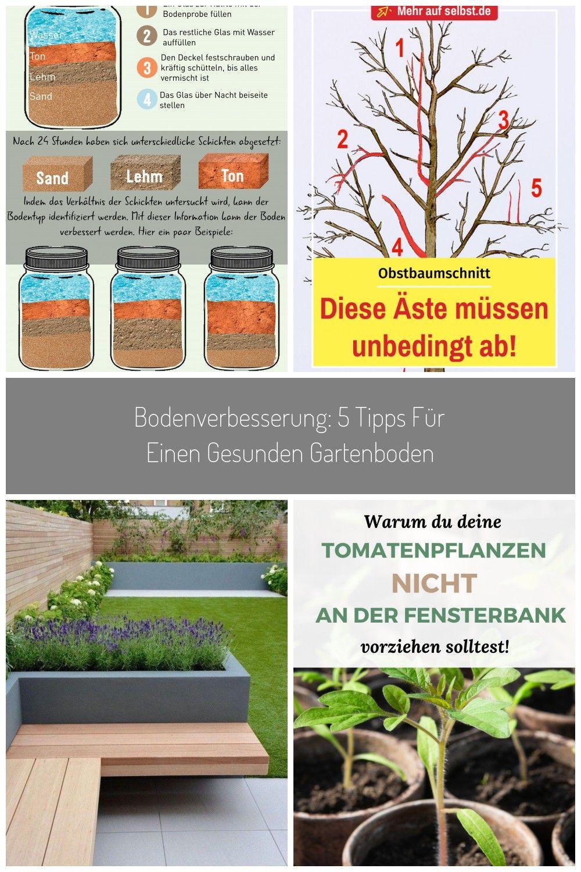 Das Thema Bodengesundheit Ist Fr Jeden Hobbygrtner Von Bedeutung Erfahren Sie Hier Wie Sie Ihren Boden Verbessern Knnenobs Pflanzen Garten Pflanzen Gartenboden
