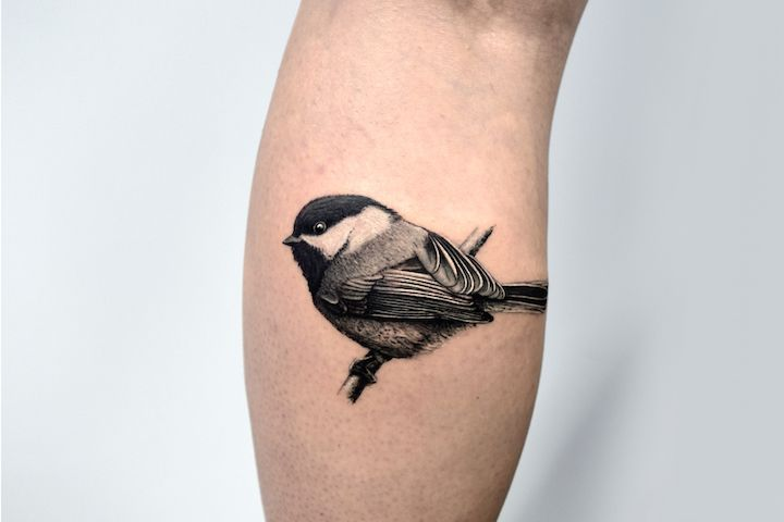 Beautiful Realistic Chickadee Tattoo By Australian Realism: Lost Lantern Chickadee