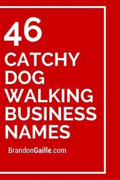 250 Catchy Dog Walking Business Names Dog Walking Business Dog