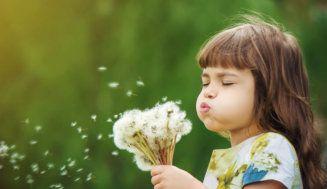 Kleine Entdecker im eigenen Garten. Oder: Gegen Neugier ist kein Kraut gewachsen! #kleinekräutergärten