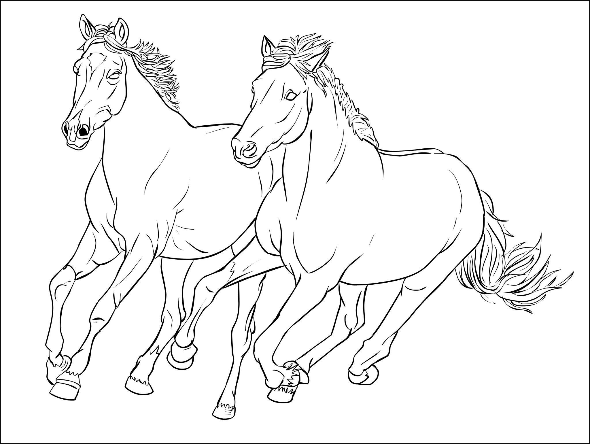 Coloriages Chevaux à Imprimer Gratuits à Imprimer - MonsieurTeddy   Coloriage cheval, Coloriage ...