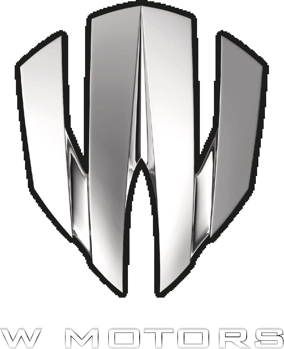 WMotors Motor logo, Logo color schemes, Logo color