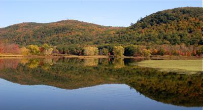 Spend a fall day in the Berkshires.