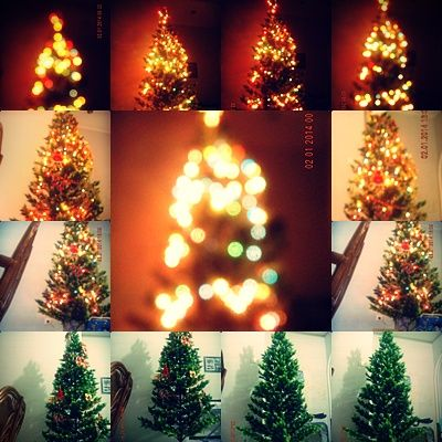 This is our Christmas tree it looks so beautiful, right There is a