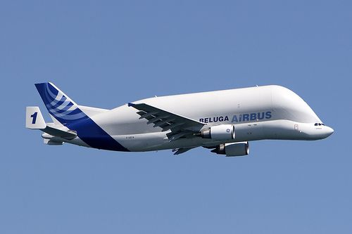 Beluga Airbus Up In The Sky Aircraft Military Aircraft Airplane
