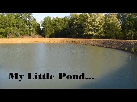 1 Acre Farm Pond Dig Time Lapse Youtube Farm Pond Pond Fish Ponds