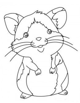 How To Become Friends With A Pet Hamster Animal Coloring Pages Coloring Pages Pets Preschool