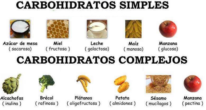 diferencia entre hidratos de carbono complejos y simples