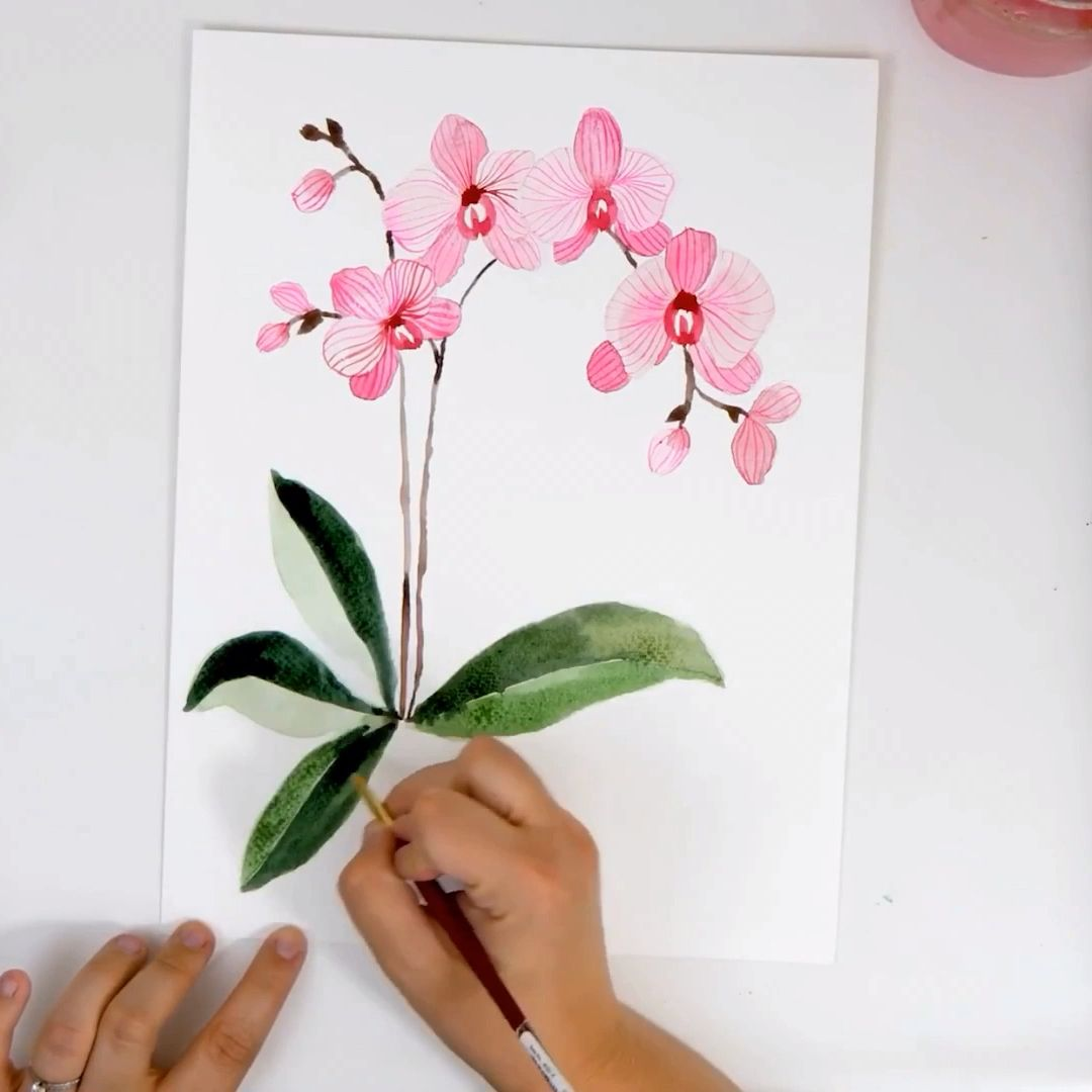 Learn How To Paint Pink Watercolor Orchids On The