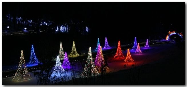 Green Bay Garden Of Lights Classy Green Bay Botanical Gardens Festival Of Lights Winter Christmas Inspiration