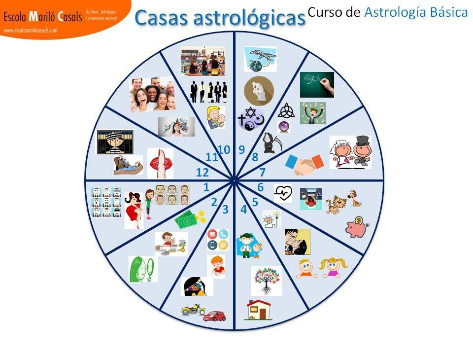 Casas astrológicas visual astrología casas 12 signos