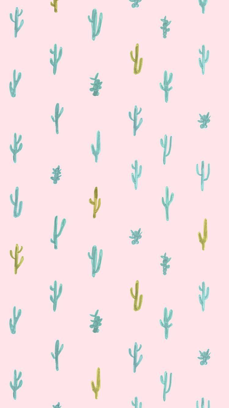 Cute Cactus Iphone Wallpaper Succulents Wallpaper Cute Backgrounds For Iphone Cute Backgrounds For Phones