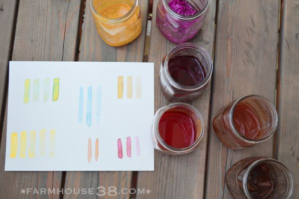 A Colorful New Book For Your Garden Library Homemade Watercolors
