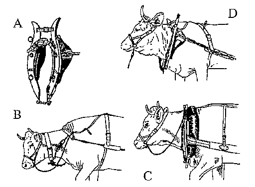 4.1 Full-collars and three-pad harnesses for cattle