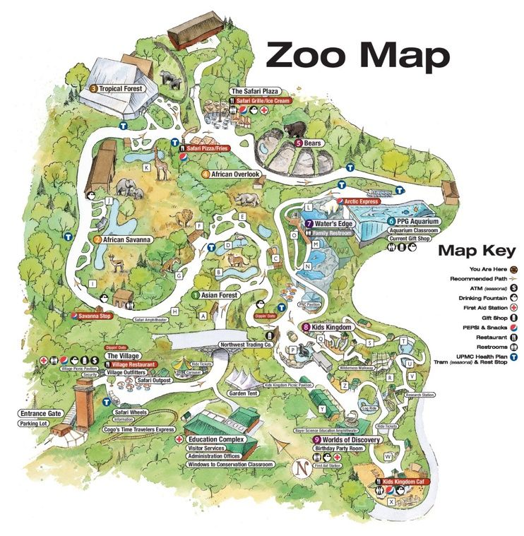 Pittsburgh Zoo map Zoos Pinterest Pittsburgh zoo Zoos and