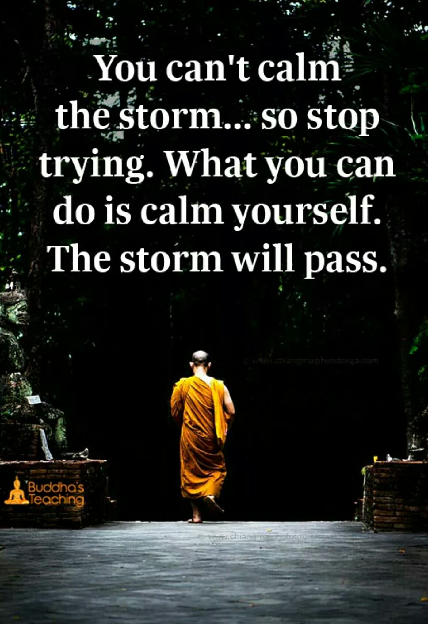 Loving Kindness Quotes Calm Through The Storm Affirmations  Pinterest  Storms