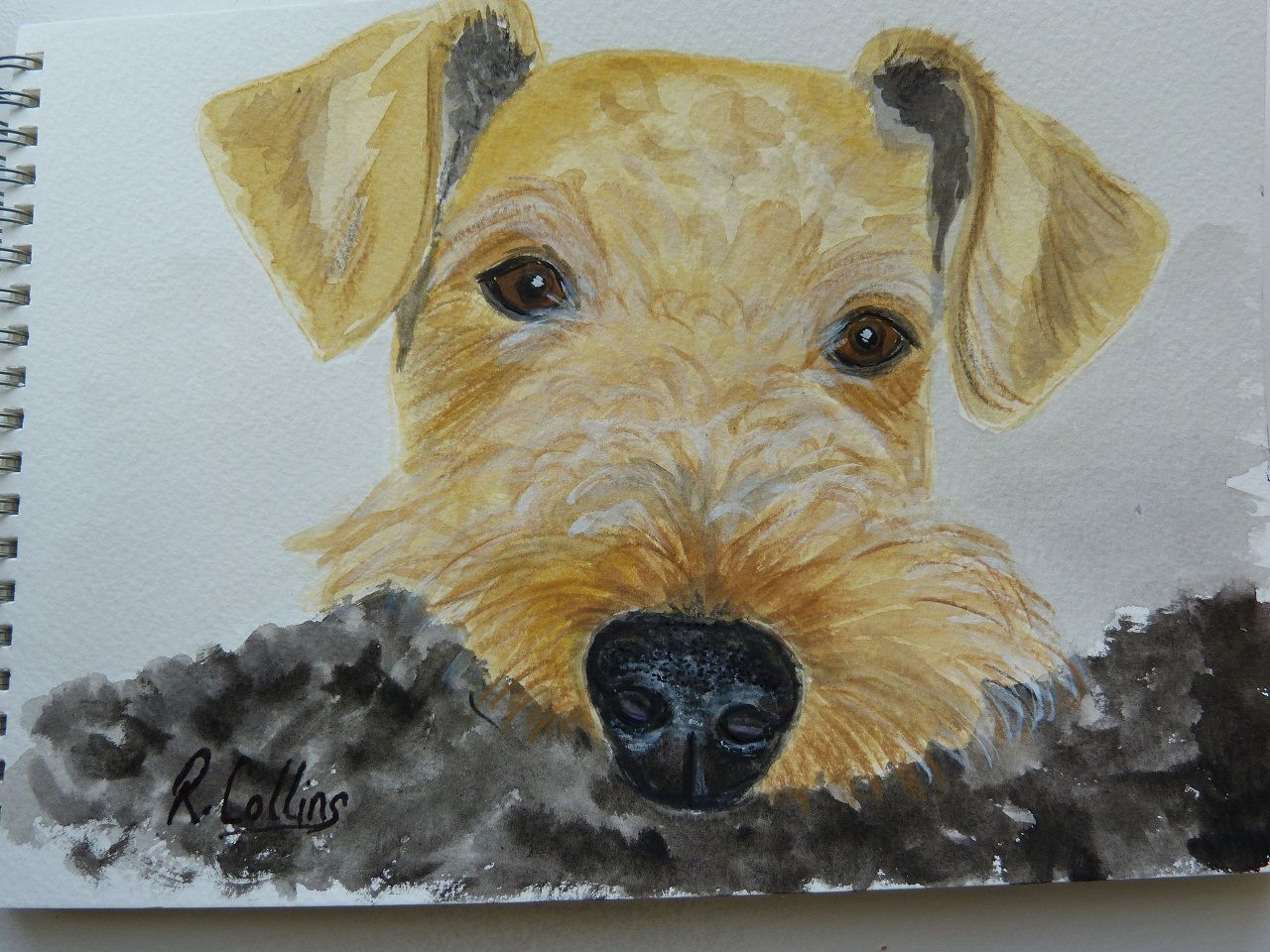 Dale.. Pet portrait painting, Art, Artsy