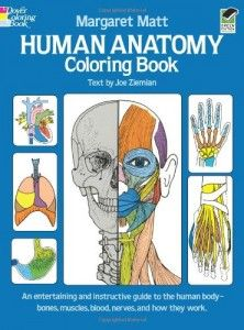 The Best Anatomy Books & Learning Aids for Kids | body unit