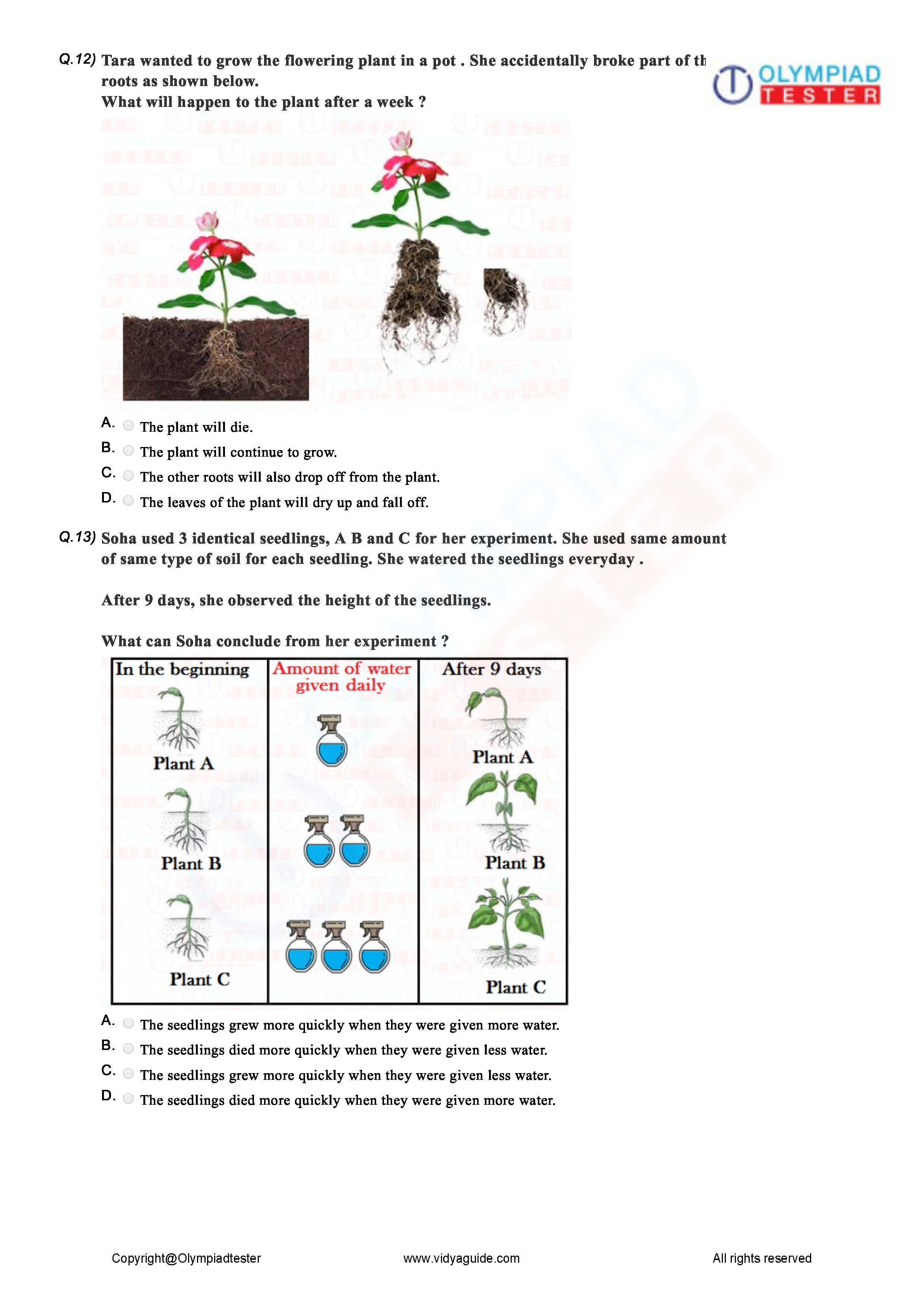 Download Class 2 Science Sample Papers As Printable