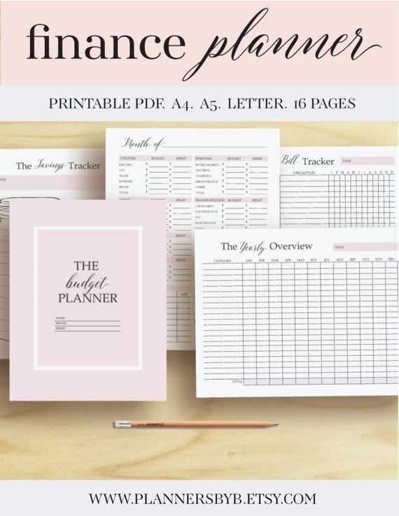 Finance planner, Money Organizer, Finance Printable, Budget Planner - money expense tracker