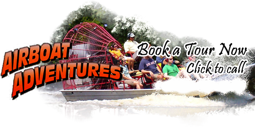 LOGO IMAGE New orleans swamp tour, Nola vacation