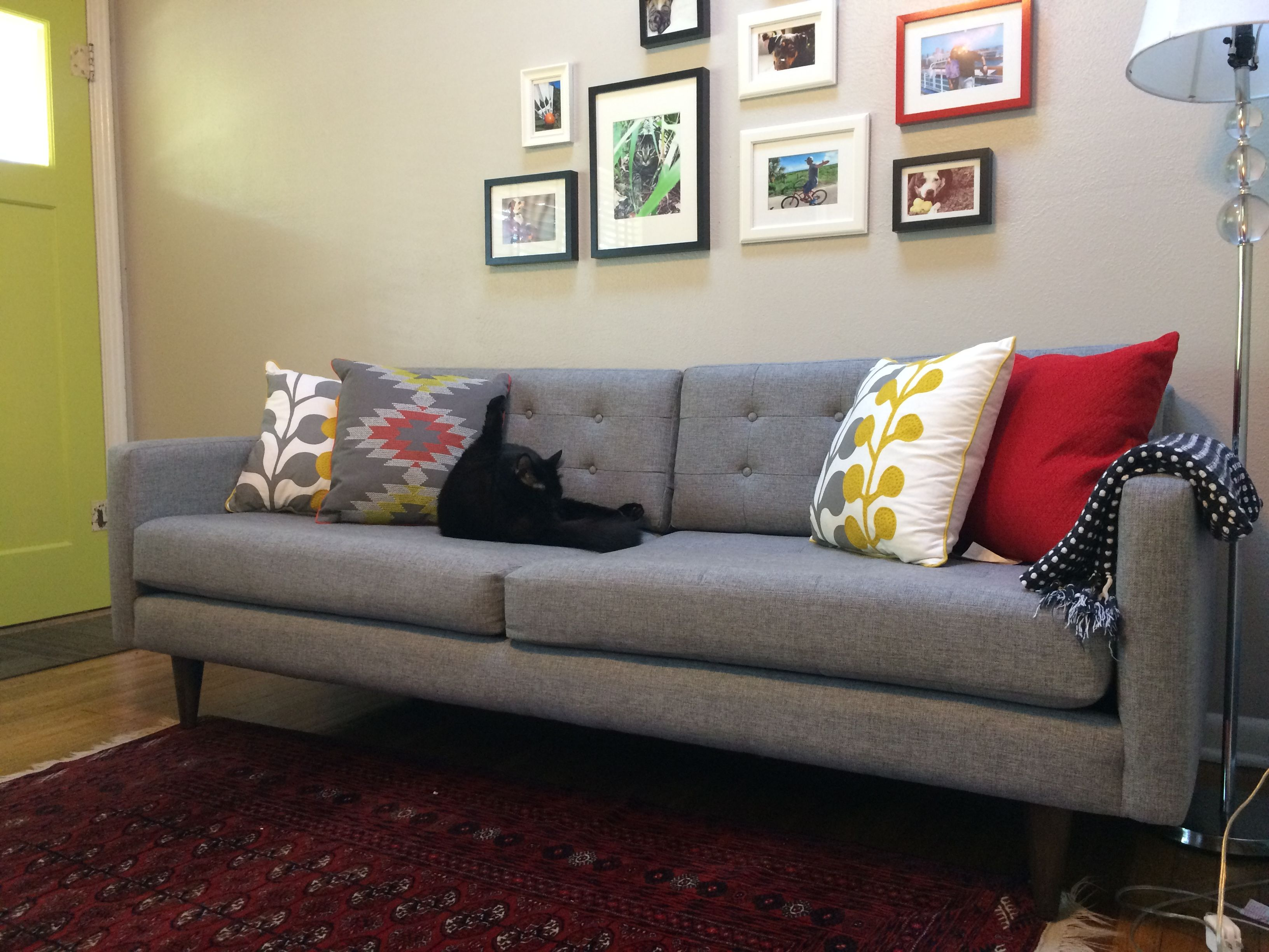 Joybird Eliot Sofa from Veronica R    Just for Pets   Pinterest     Joybird Eliot Sofa from Veronica R