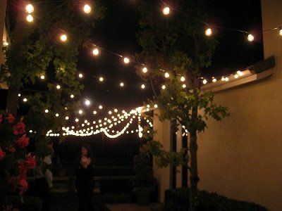 Charming 50 Foot Globe Patio String Lights   Set Of 50 G40 Clear Bulbs With Green  Cord