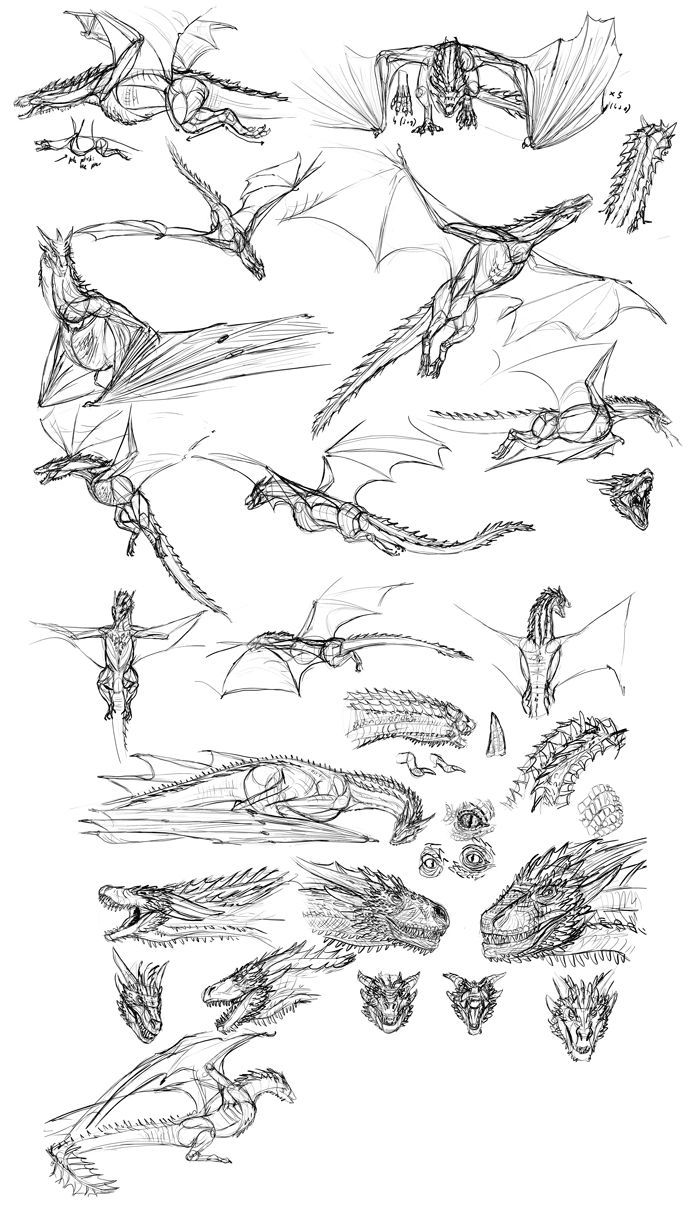 how to paint game of thrones u0026 39  drogon in sketch