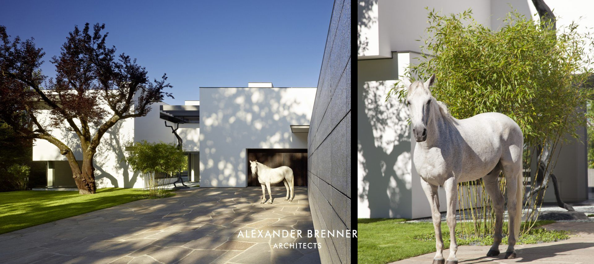 Alexander Brenner Architects (alexanderbrenne) on Pinterest