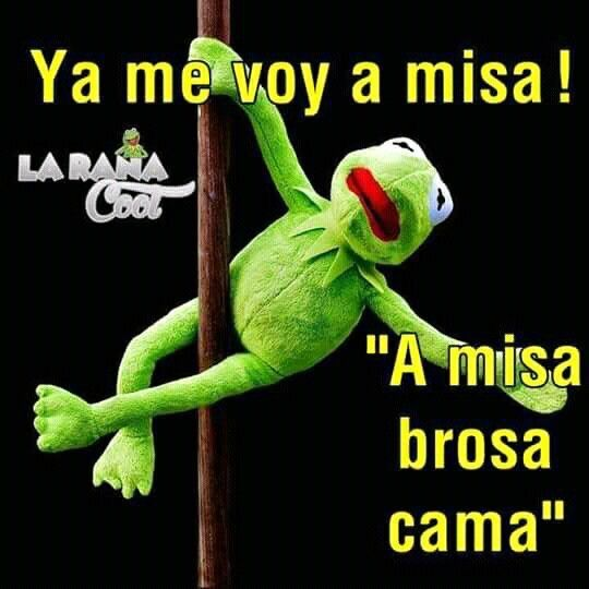 Pin By Silvia Coello On Frases Funny Memes Funny Phrases Funny Quotes