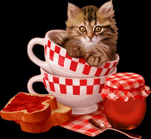 Tubes chats animaux rigolos pinterest chats jolis - Dessin de chat rigolo ...