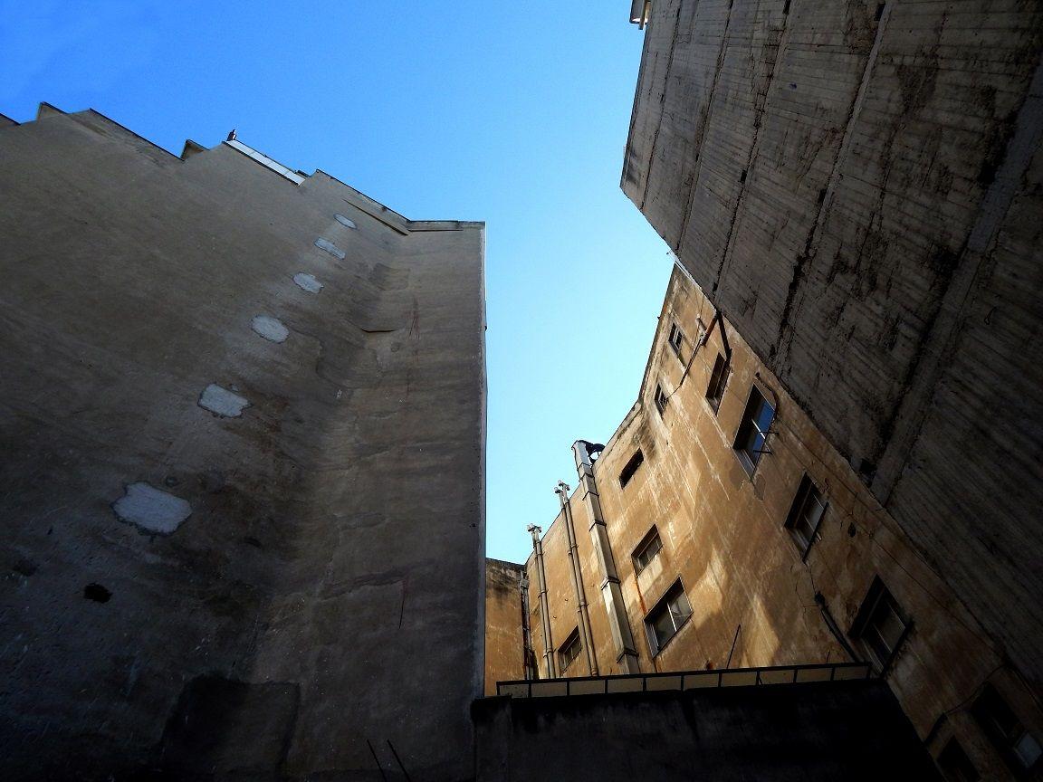 Από χαμηλά - Φωτογραφία: Θεοδώρα Κυζιρίδου