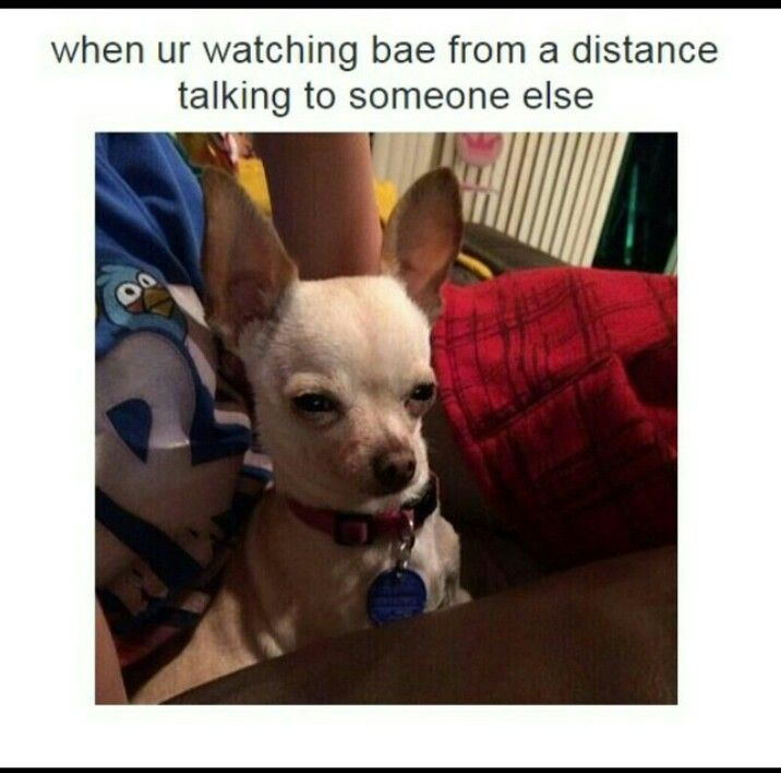 Watching bae distance