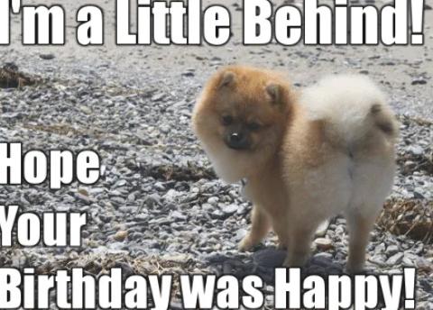 Happy Belated Birthday Meme Funny Happy Birthday Meme Funny Belated Birthday Wishes Funny Happy Birthday Meme Happy Belated Birthday Meme