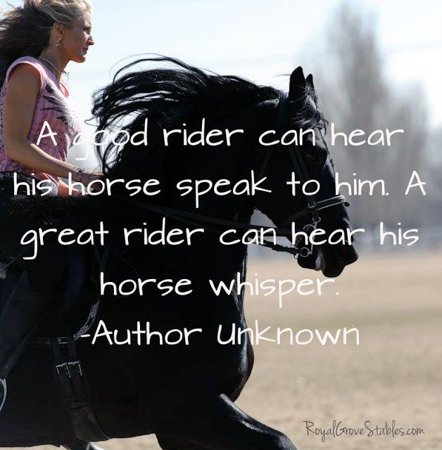 paarden spreuken Pin by Terri Lorenz on I love Horses | Pinterest | Paarden  paarden spreuken