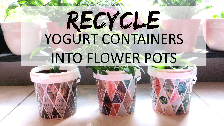 Recycle Yogurt Containers Into Flower Pots Plant Pot Diy Diy