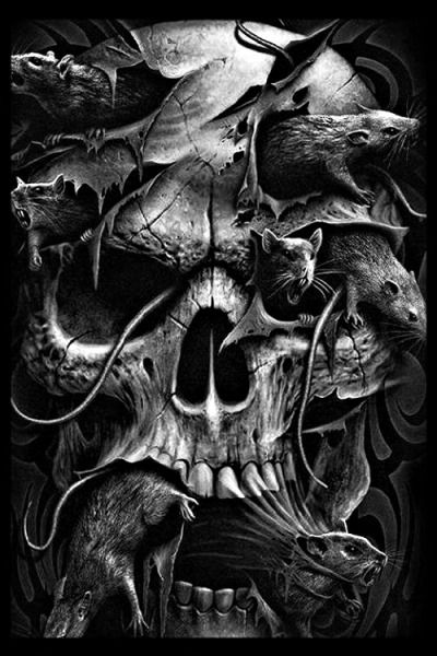 Skull Infested by Rats...