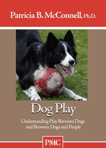 Dog Play Dvd Excellent Explanation Of Positive And Negative