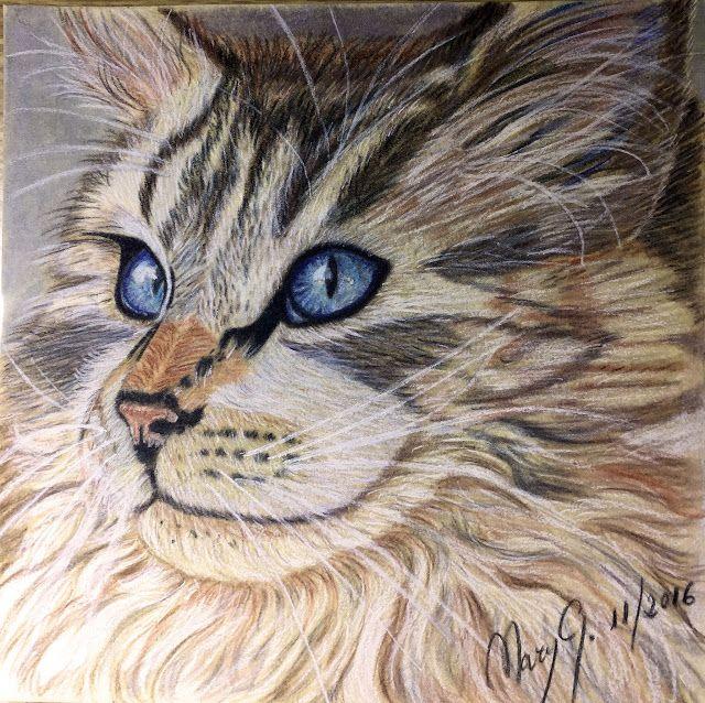 Dibujo Artistico By Mary G Gatito Color Artistas Dibujos Artisticos Gatito