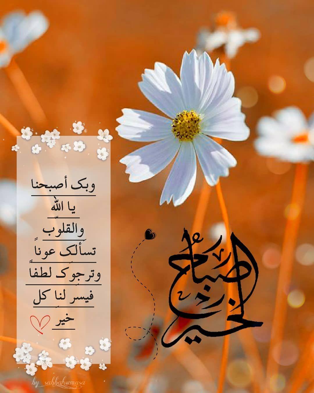 صبح و مساء On Instagram صباح الخيرات والمسرات صباح الورد صب Good Evening Wishes Good Morning Arabic Good Morning Greetings