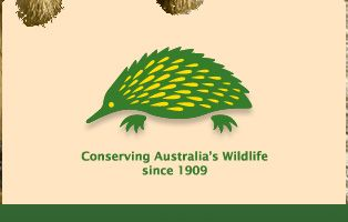 Australian Wildlife Society