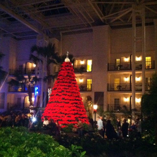 Christmas Tree Inn Tn: Pin On Gaylord Hotel