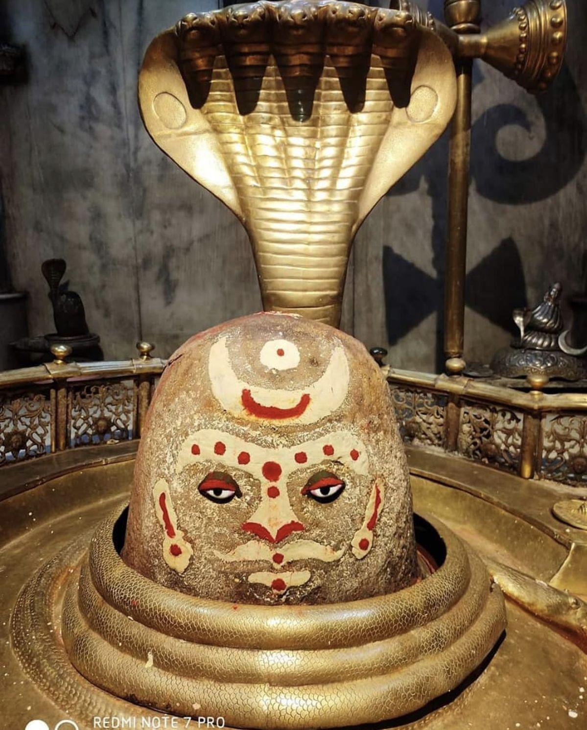 Pin by seema yadav on Shiva in 2020 Kali shiva, Shiva