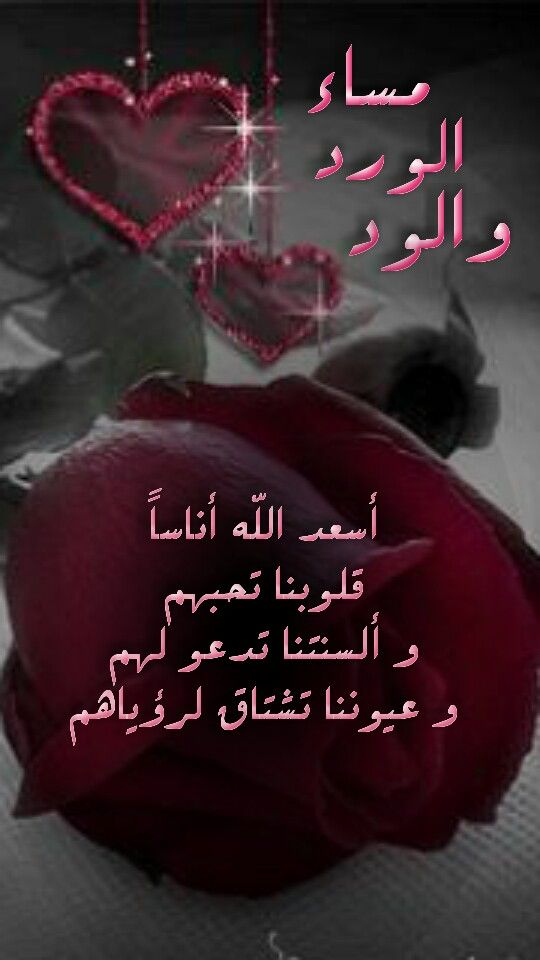 Pin By Ranya Anis On صباحيات و مسائيات Funny Arabic Quotes Good Evening Love Quotes For Him