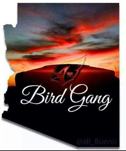 f5c1e3cb Arizona Cardinals Bird Gang | Cardinals Football | Arizona cardinals ...