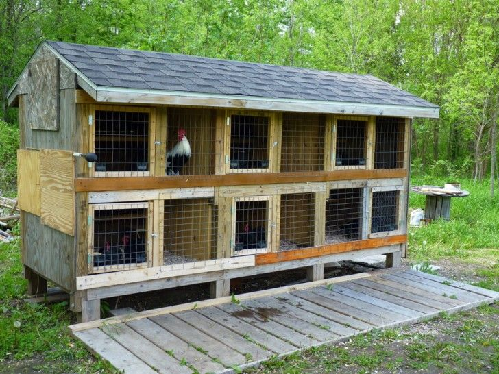 Chicken Coop Plans If You D Love To Make Sure Of Your Chicken And