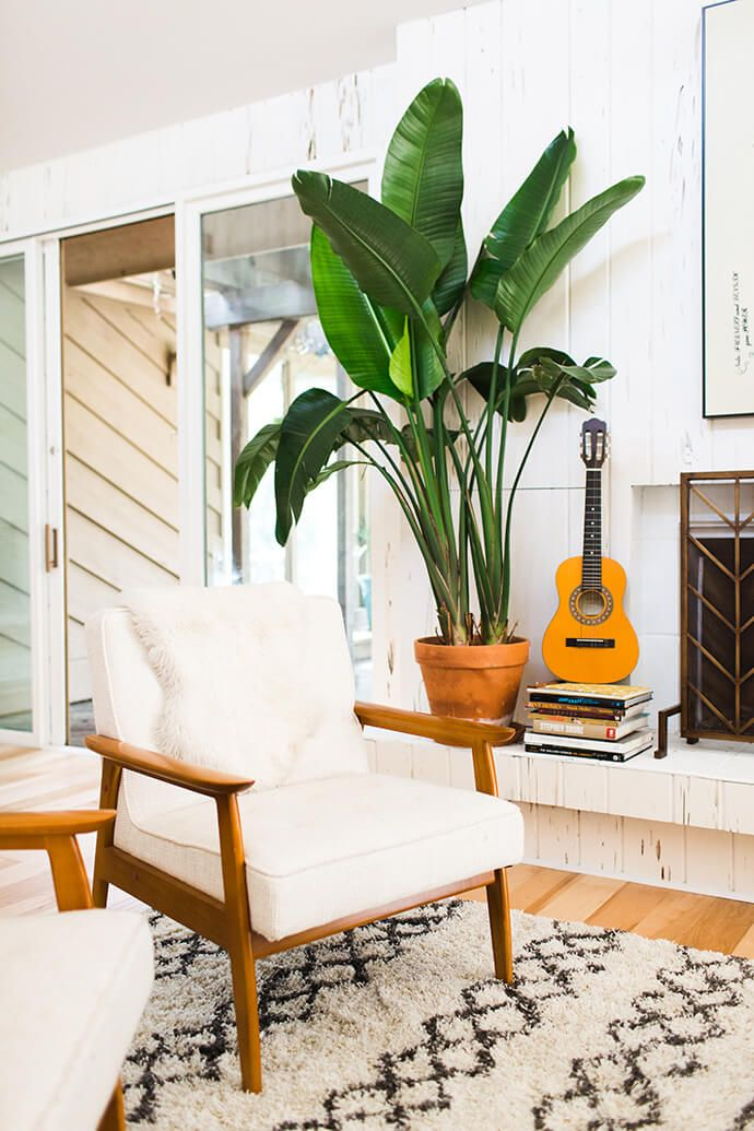 Step Inside The Sunny Home Of Erin Barrett Sessel Pflanze Und