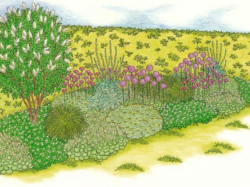 So Wird Ihr Garten Very British Englischer Garten Garten Gartengestaltung