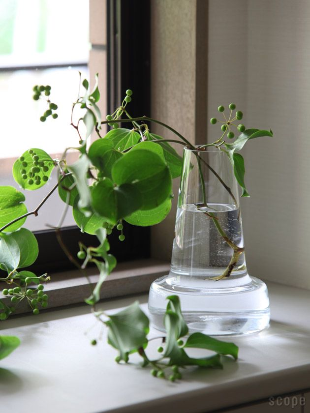 .. vases on the windowsill by Holmegaard