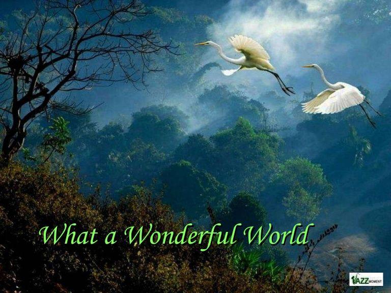 What a Wonderful World - beautiful mother #nature